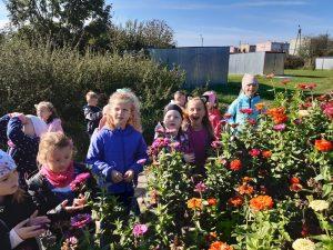 Dzieci z oddziału przedszkolnego podziwiają kwitnące kwiaty. W tle widać pojedyncze zabudowania.