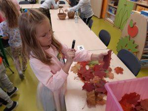 Dziewczynka z oddziału przedszkolnego ogląda przez lupę kolorowy liść. Przed nią na stoliku leżą pozostałe liście. W tle widać innych uczniów oglądających przez lupę różne przedmioty.
