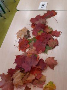 Na stoliku leżą rozrzucone kolorowe liście oraz karteczka z numerem 5.