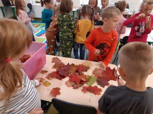 Uczniowie z odziału przedszkolnego oglądają pod lupami różne przedmioty. Na pierwszym planie widzimy stolik na którym rozsypane są jesienne liście.