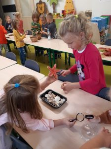 Dzieci z oddziału przedszkolnego oglądają pod lupami różne przedmioty. Uczennice na pierwszym planie podają sobie rozgwiazdę, a przed nimi na stoliku w plastikowym pudełku leżą muszelki.
