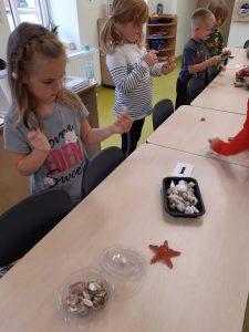 Przy połączonych stolikach stoją uczniowie. Przed nimi leżą miseczki z muszelkami i karteczka z numerem 1. Dzieci trzymają w dłoniach lupy przez które obserwują trzymane w dłoniach muszelki.