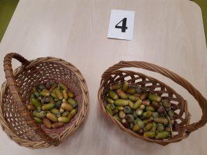 Na stoliku stoją dwa koszyczki z żołędziami oraz karteczka z numerem 4.