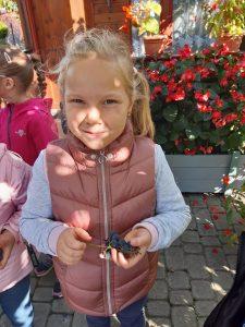 Dziewczynka z oddziału przedszkolnego uśmiecha się do zdjęcia. W ręku trzyma kiść winogrona.