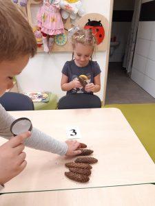 Na stoliku leżę ułożone w rządku szyszki a przy nich karteczka z numerem 3. Uczeń oddziału przedszkolnego trzymający w dłoni lupę sięga po jedną z szyszek. Na szczycie stołu stoi uczennica oglądająca przez lupę trzymaną w dłoni szyszkę.