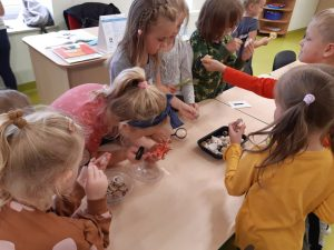 Dzieci z oddziału przedszkolnego pochylają się z lupami nad stolikiem, na którym leżą w miseczkach muszelki.