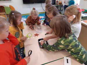 Uczniowie z oddziału przedszkolnego stoją z lupami w dłoniach przy stoliku z numerem 1. Dwie dziewczynki wyciągają m,uszelki z plastikowego pudełka.